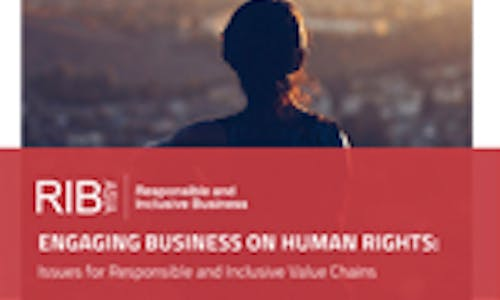 Engaging business on human rights: Issues for responsible and inclusive value chains (2015)