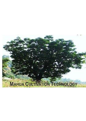 Nonfood Biodiesel Seed Leaflet: MAHUA-Madhuca longifolia