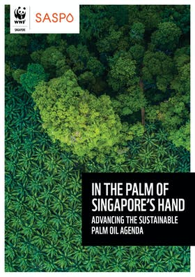 In the palm of Singapore's hand - advancing the sustainable palm oil agenda