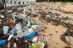 trash collected during the East Coast beach clean up