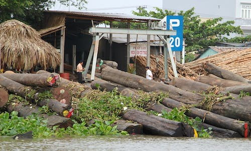 Vietnam's timber sector takes a hit from coronavirus outbreak