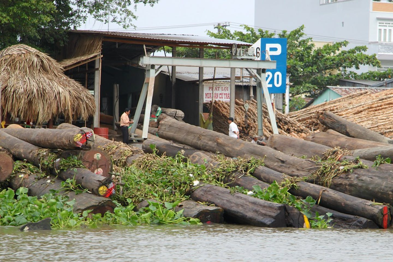 vietnam timber