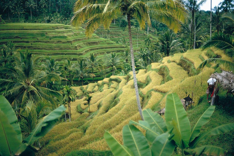 Sulawesi Selatan, Indonesia