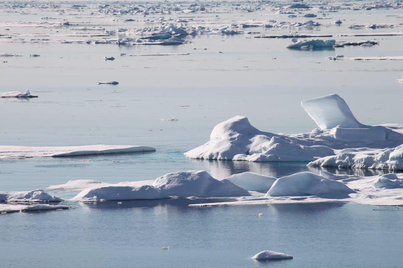 dwindling arctic sea ice