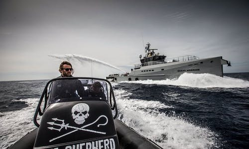 Can hardline activists Sea Shepherd have an impact in Southeast Asia?