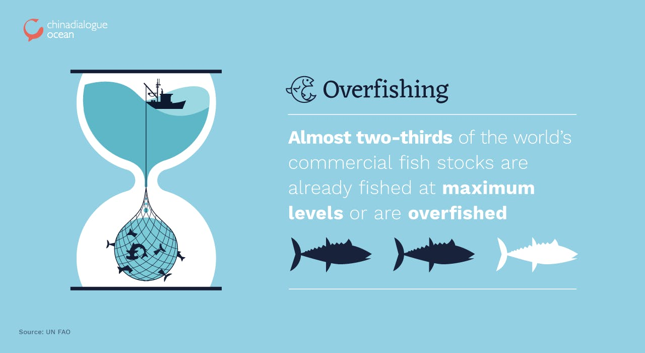 Overfishing graphics