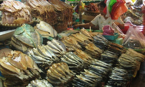 Filipino researchers report microplastics inside a commonly consumed fish