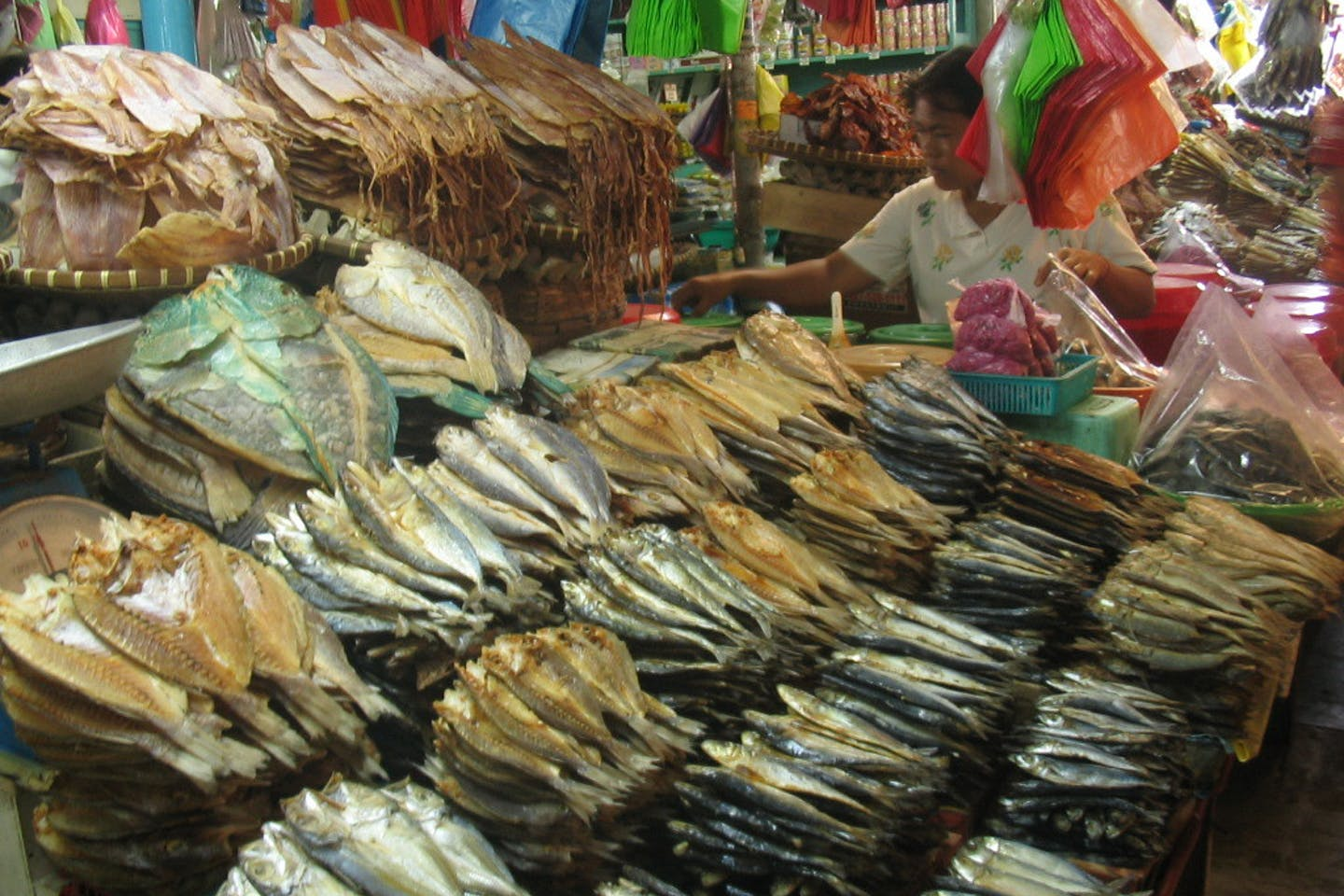 dried fish microplastics