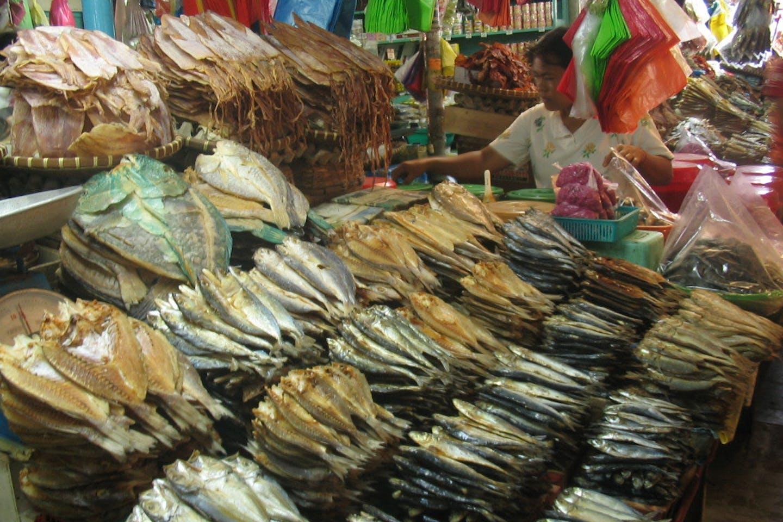 dried fish microplastics