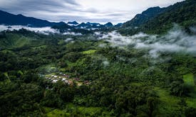What are the obstacles in protecting Indonesia's forests and cutting emissions?
