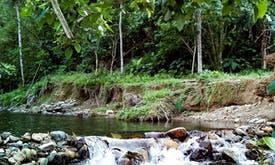 Planned dam in Philippine national park draws flak from activists, officials