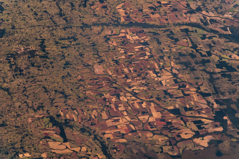 amazon rainforest satellite image
