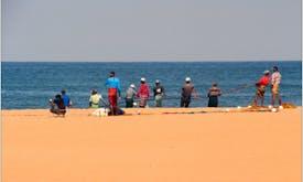 COP25 to keep ocean focus despite moving to Madrid