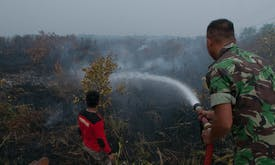 As 2020 fire season nears, Indonesian president blasts officials for last year's burning