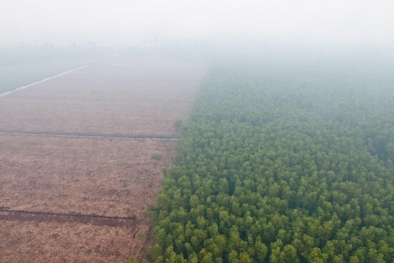 haze riau indonesia