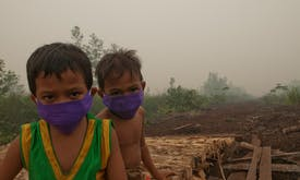 Climate change and the bleak prognosis for human health