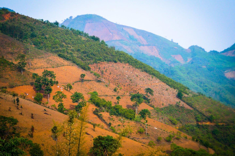 Deforested terrain Guangxi Zhuang, China