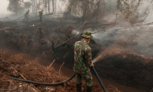 Peatland on fire as burning season starts anew in Indonesia