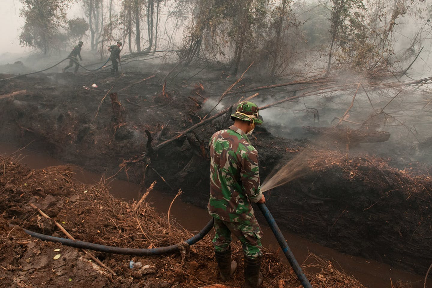 burning peatland indonesia