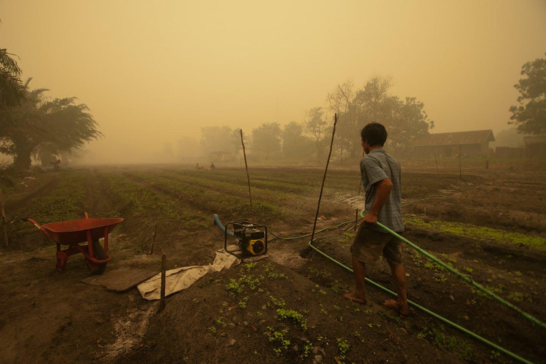 haze kalimantan indonesia