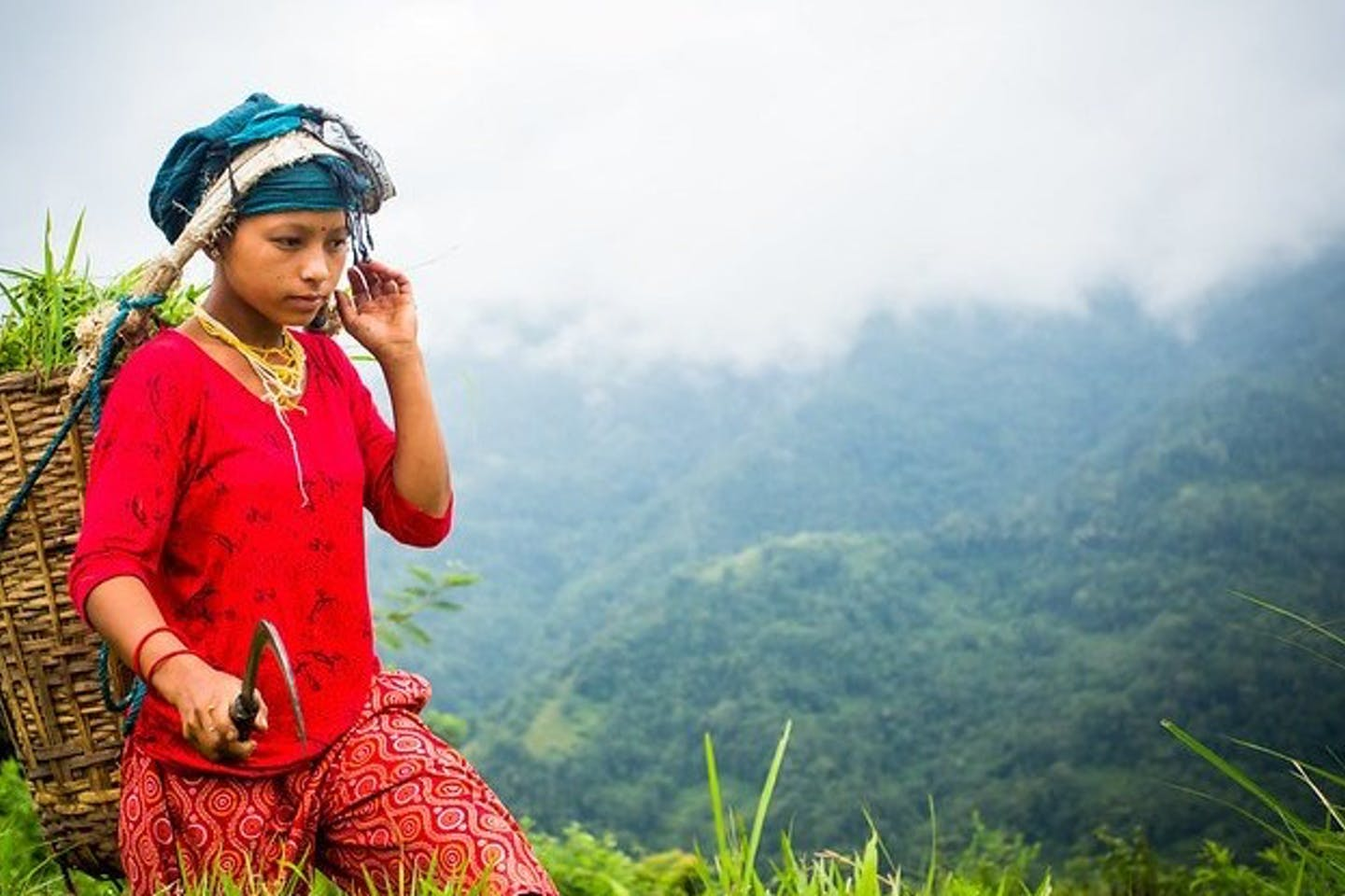 New guide aims to accelerate forest tenure pathways to gender equality