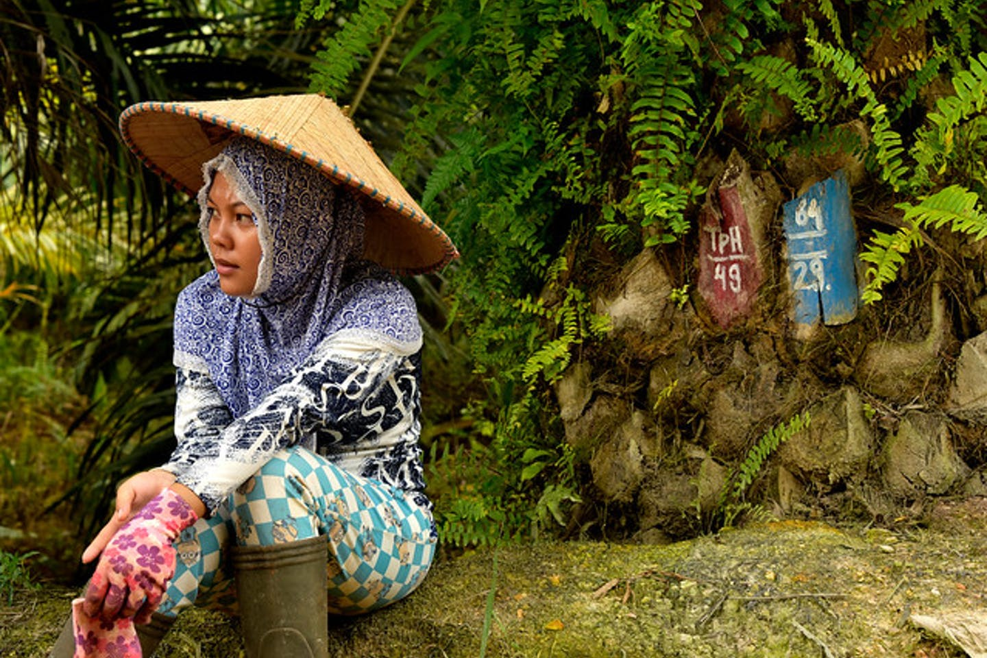 woman palm oil human rights