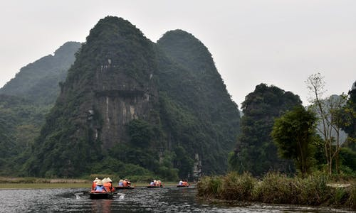 Vietnam's new conservation plan prioritises trees and people, but not emissions