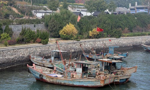 China tightens sustainability rules for its notorious fishing fleet