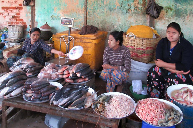 fish market myanmar