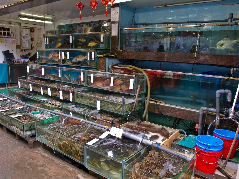 Seafood tanks at fish restaurant, Lamma island, Hong Kong.
