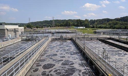 Microwaving sewage waste may make it safe to use as fertiliser on crops