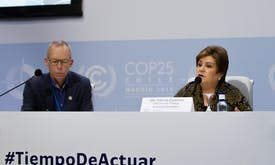 Declare climate emergency, say scientists