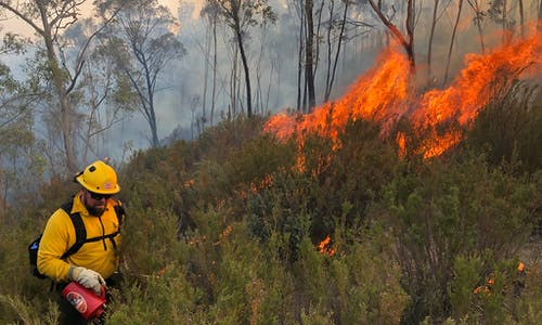 Research confirms climate link to Australian bushfires