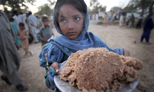 Diet for healthy people, healthy planet too costly for some