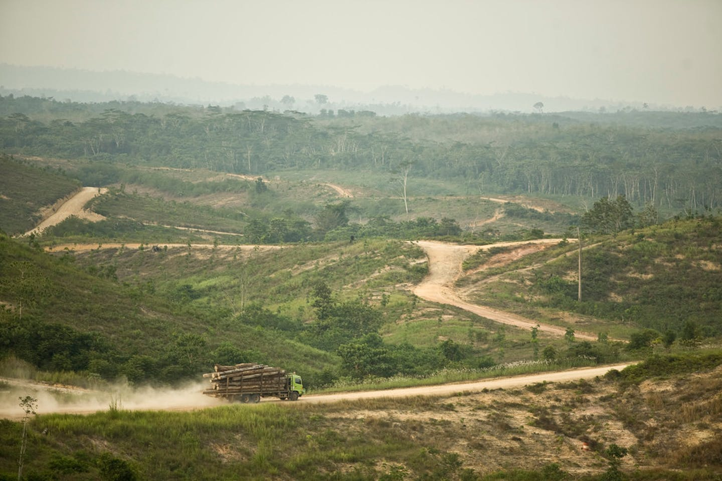 sumatra indonesia deforestation