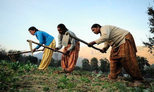 From farming to female empowerment