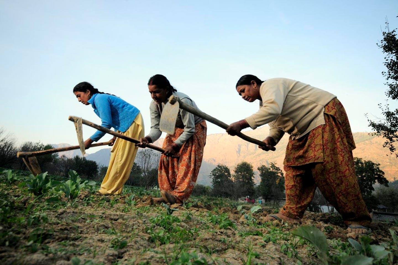 women farmers in Himachal Pradesh