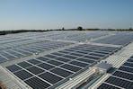 Ricoh EAD dialogue, rooftop solar