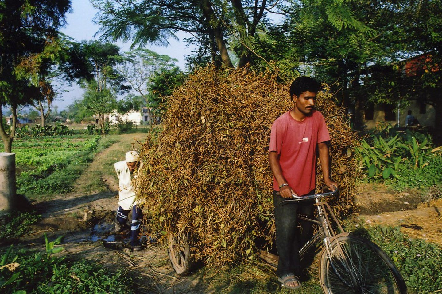 Soybean farmers in Uttarakhand, India