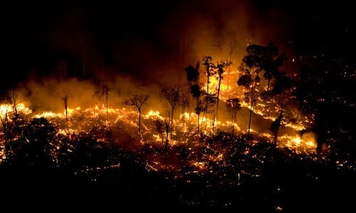 Fires threaten the Amazon once again. What have we learned?