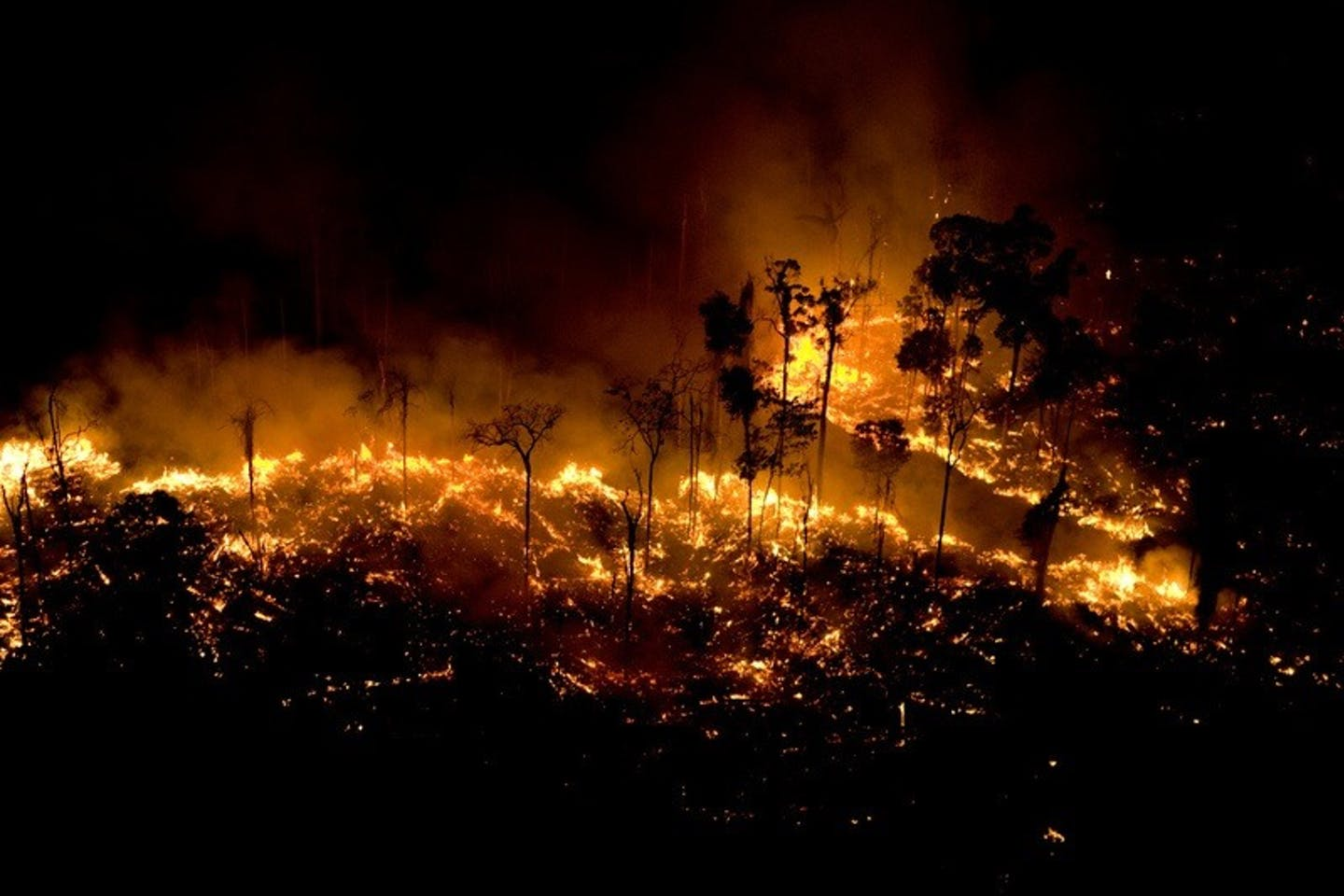 Forest fire blazing in Apui, Brazil's Amazonas state, in August 2020
