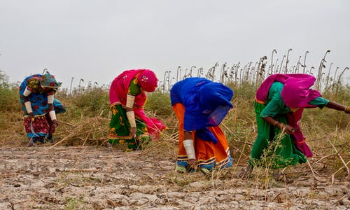 Women in Pakistan's Sindh win historic recognition to manage water