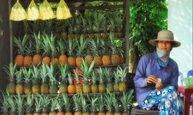 Researchers use pineapple leaves to extend shelf life of fruits and vegetables