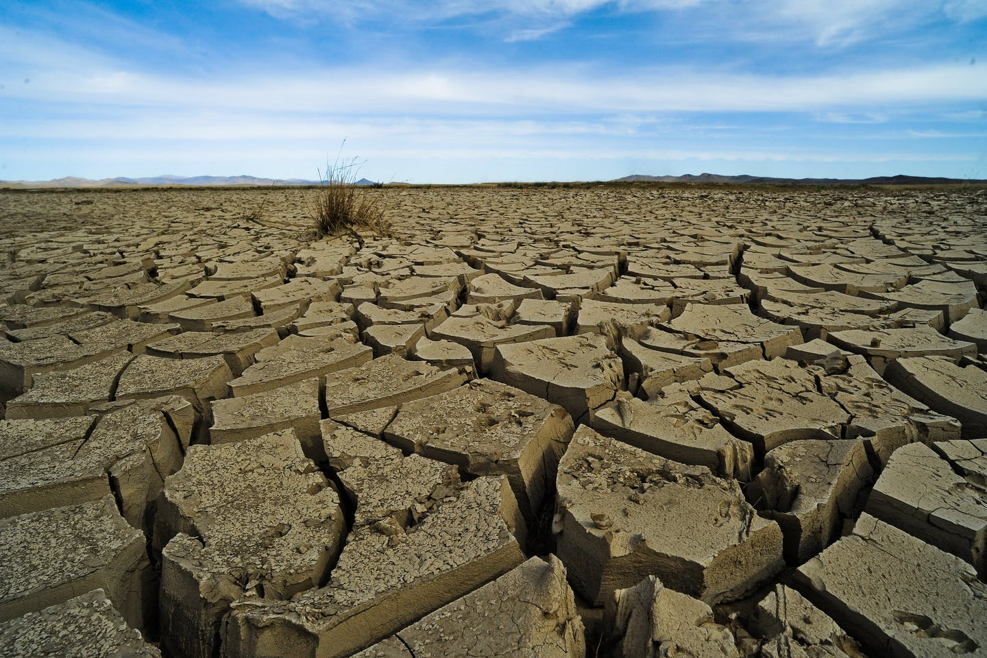 Climate change-induced drought in Mongolia