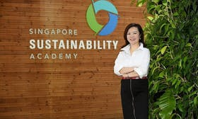 Rise of the chief sustainability officer