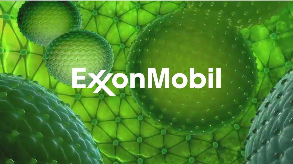 Exxon advertising algae as the future of biofuels