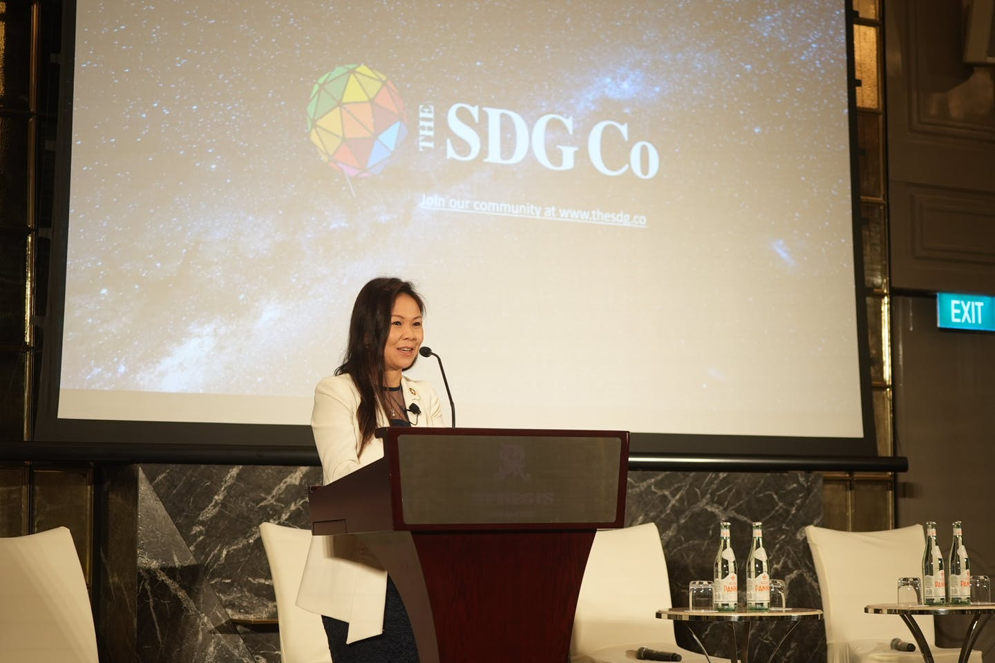 unveiling of the sdg co