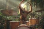 Darrell Lea orangutan ad