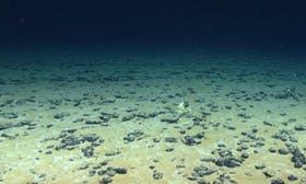 Why the worry about deep-sea mining?