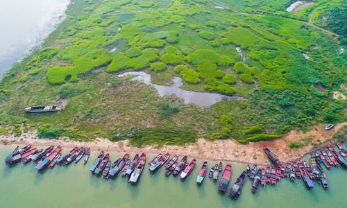 Distant-water fishing operations must become more transparent